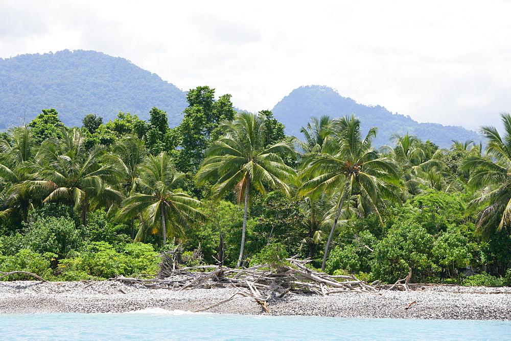 Coastal landscape, Biliau, Papua New Guinea, Melanesia