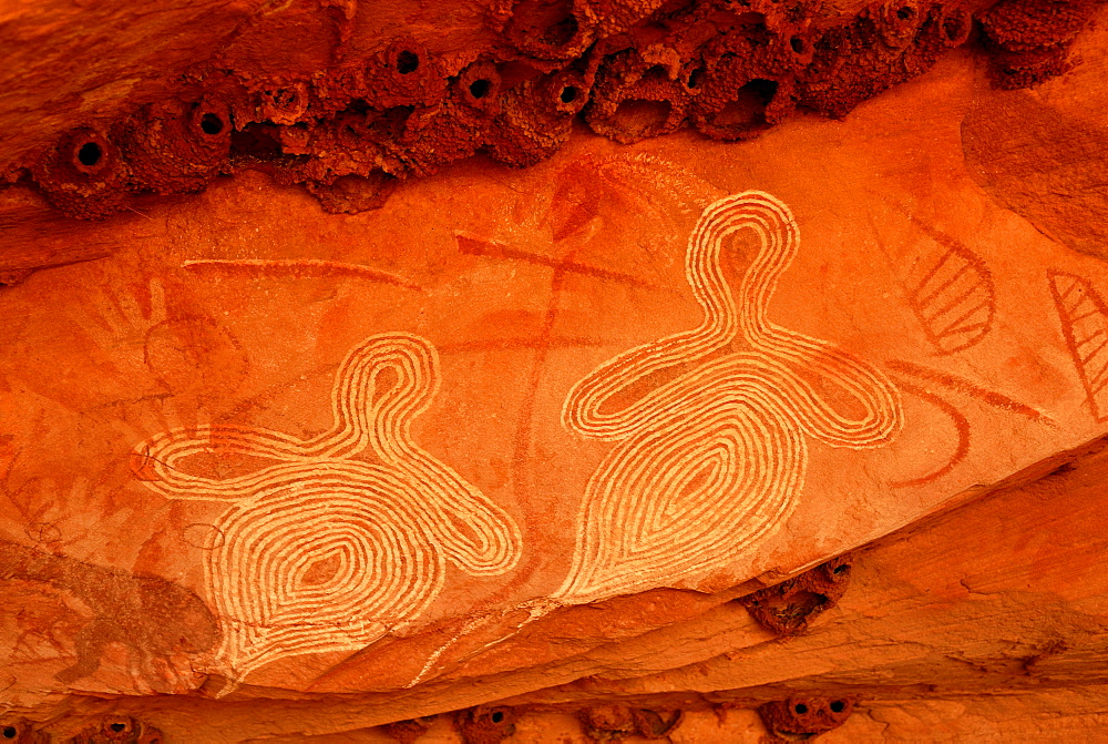 Aboriginal rock art depicting crag martins nests, south of Alice Springs, Northern Territory, Australia