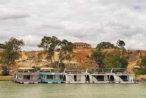 Houseboats on the Murray River near Berri, South Australia, Australia