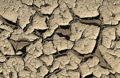 Dried out soil caused by drought and lack of water