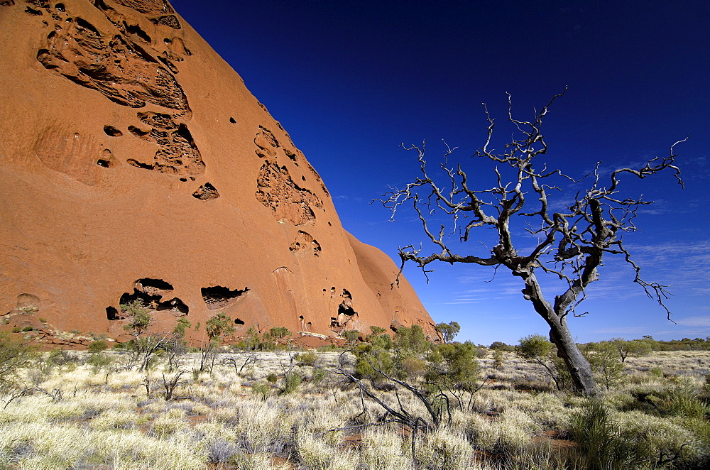 Ayers, rock, uluru, Northern territory, australia