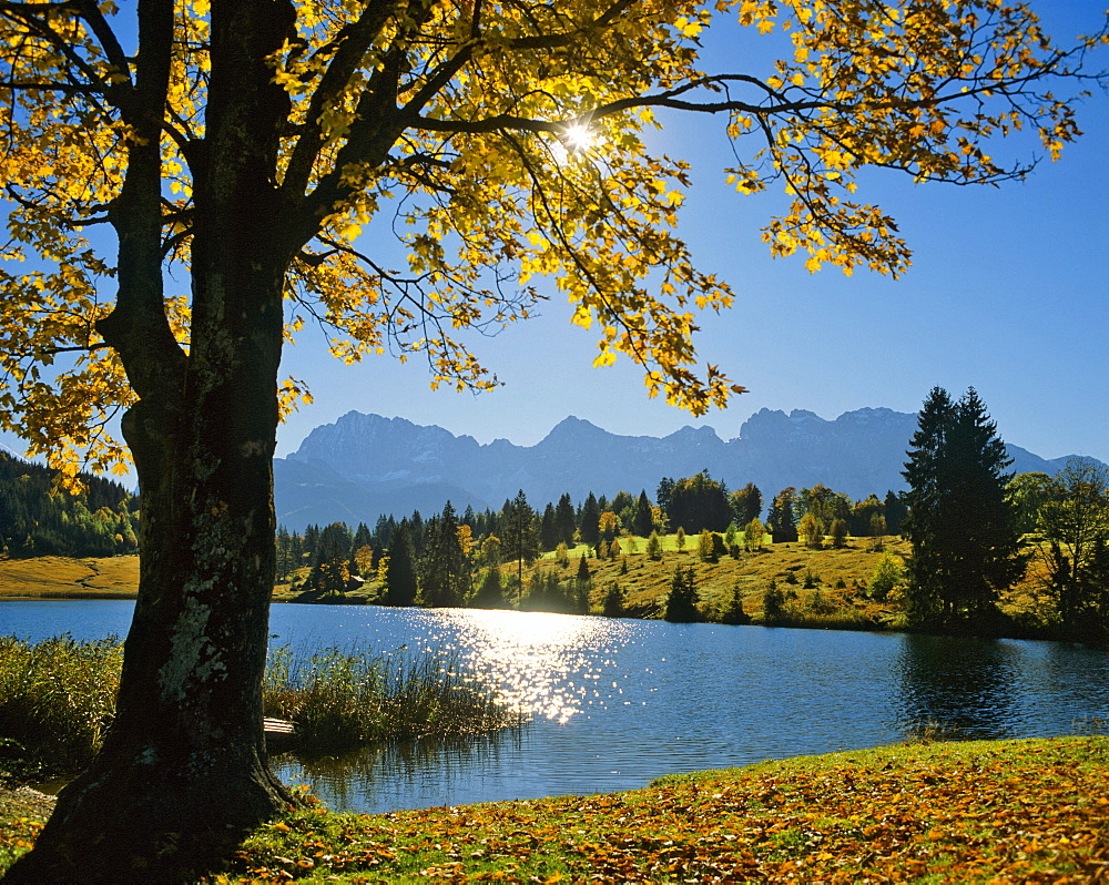 Autumn scenery, Lake Gerold, Gerold, Karwendel Range, Upper Bavaria, Bavaria, Germany