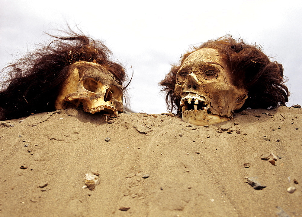 Inca graves, skulls, Inca mummies, archaeological excavations, Puruchuco-Huaquerones, near Lima, Peru, South America