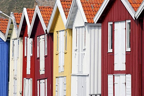 Famous colourful boathouses in the harbour of Smoegen in Sweden - Smoegenbryggan, Smoegen near by Kungshamn, Bohuslaen, Vaestra Goetalands, Vaestergotland, Skagerrak, Sweden, Skandinavia, Europa