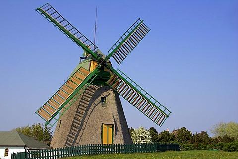 Old windmill build in dutch style - Nebel, Amrum, North Frisia, Schleswig-Holstein, Germany, Europe