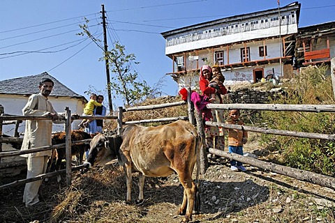 Family with cow, Matiyama, Himachal Pradesh, India