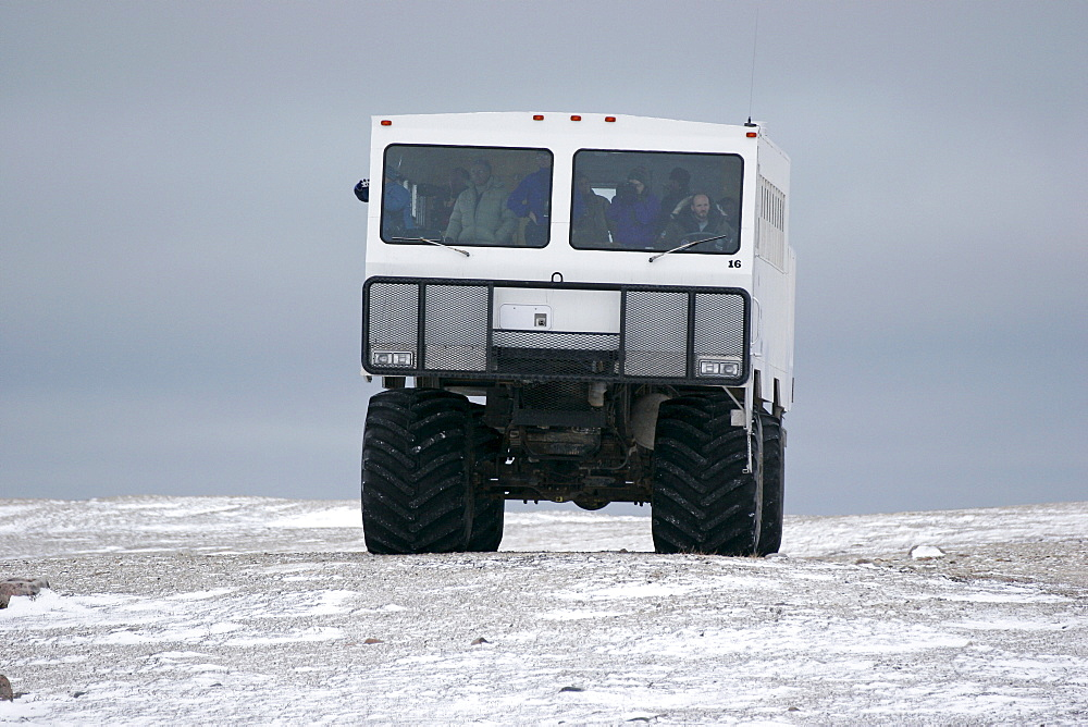 Tundra Buggy driving through the tundra in search of Polar Bears, Churchill, Manitoba, Canada