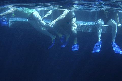 Bathing platform, Great Barrier Reef, Australia