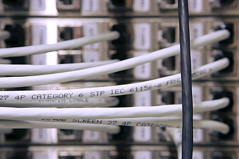 DEU Germany : Cable of a computer server center of a company. |