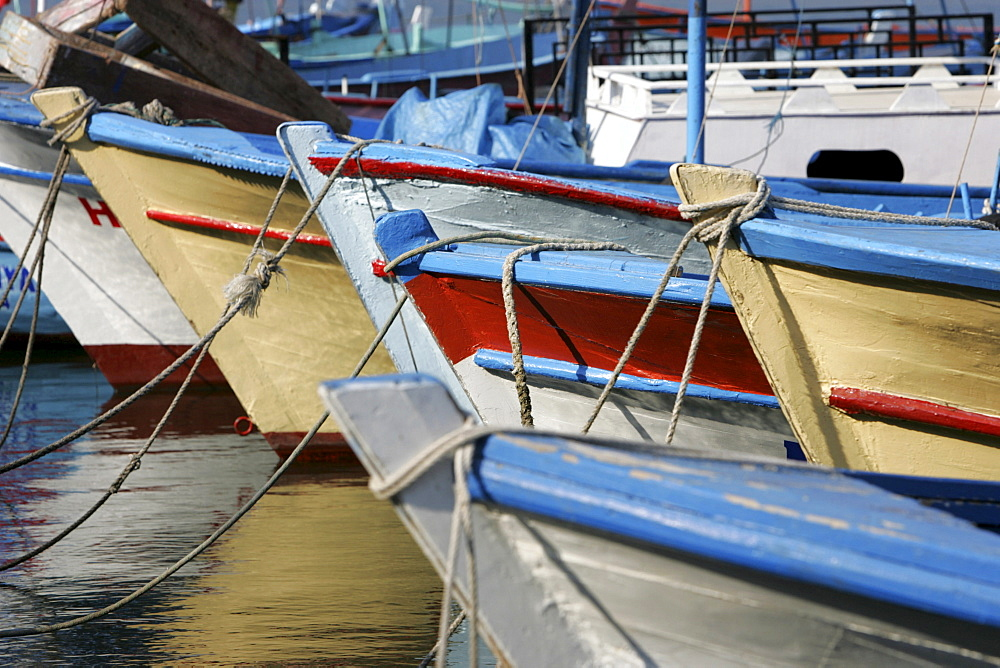 TUR, Turkey, Alanya : Turkish Riviera. Harbour fishing boats. |