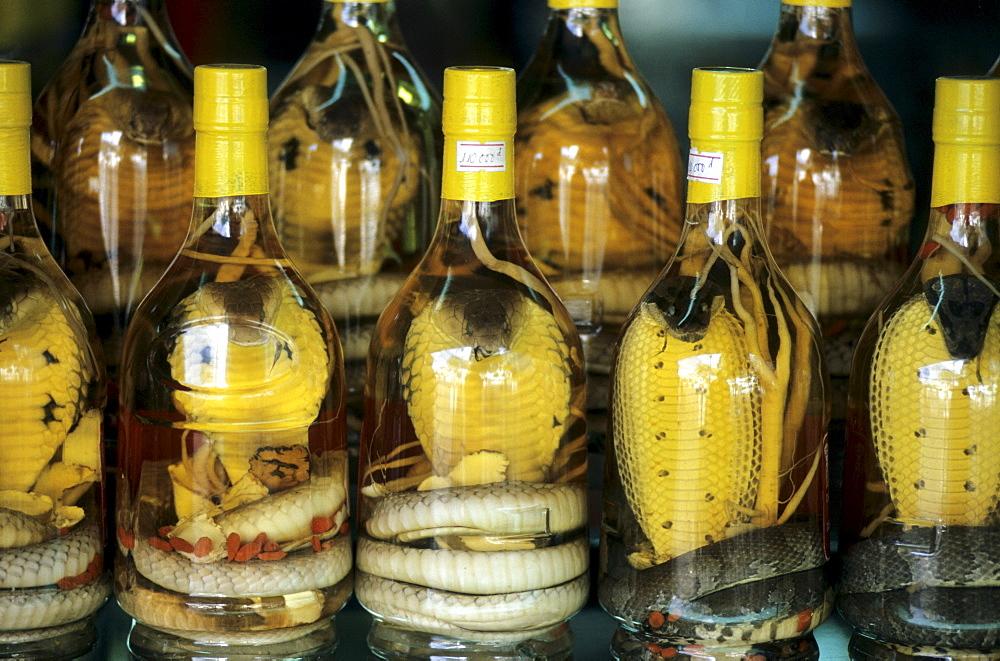 Snake schnapps used as an aphrodisiac, Ho Chi Minh City (Saigon), Vietnam, Asia
