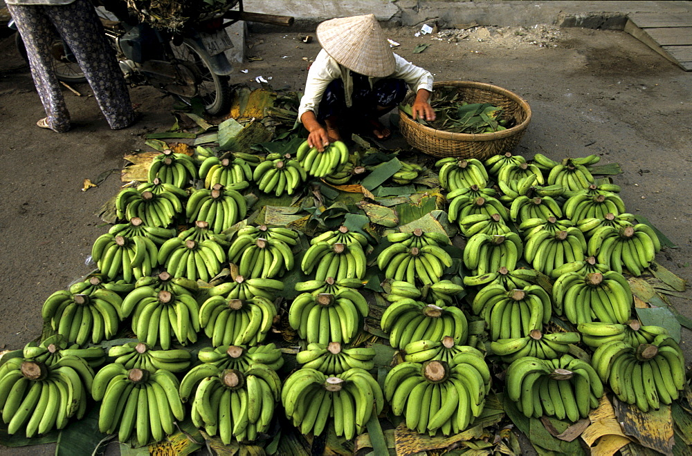Bananas for sale at Cho Dam central marketplace, Nha Trang, Khanh Hoa Province, South Central Coast, Vietnam, Asia