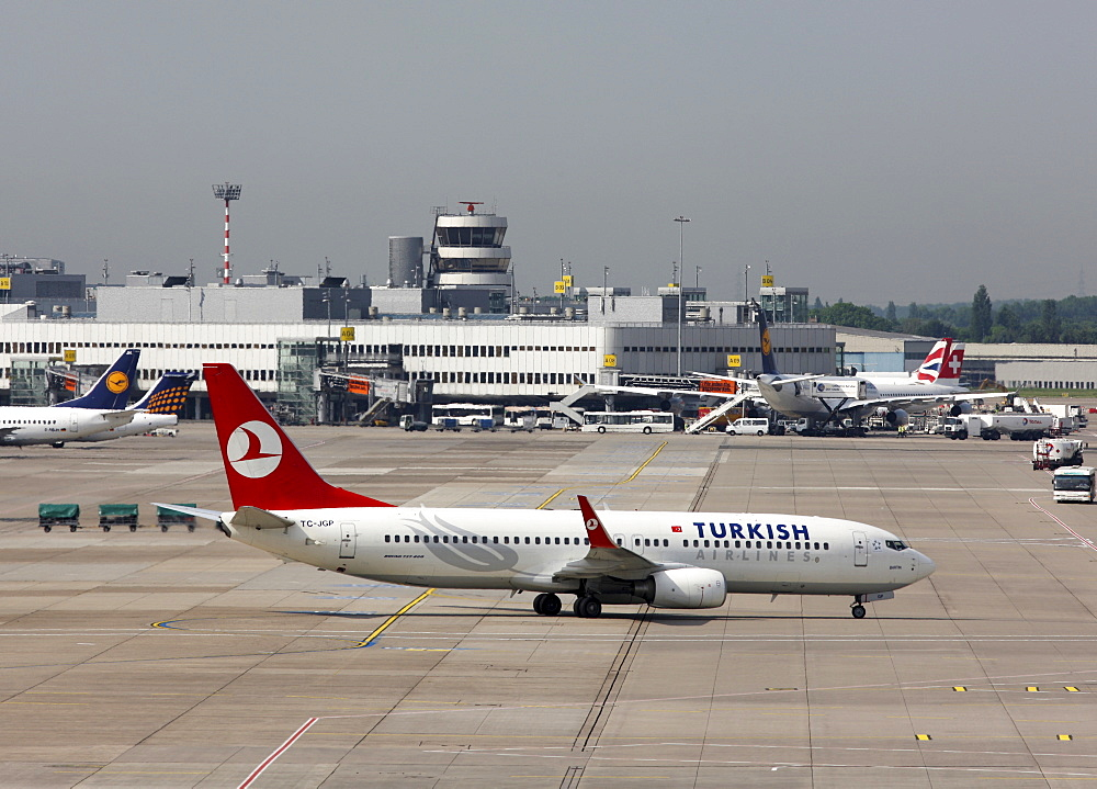 Turkish Airlines Boeing 737, Duesseldorf International Airport, Duesseldorf, North Rhine-Westphalia, Germany, Europe