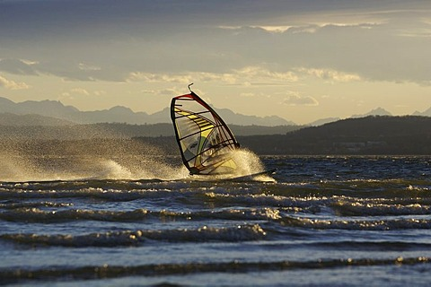Windsurfer on the Ammersee in evening light, Bavaria, Germany