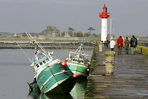 FRA, France, Normandy: Fishing boats in the port of St. Vaast La Hougue, at low tide. Behind, the small island of Tatihou.