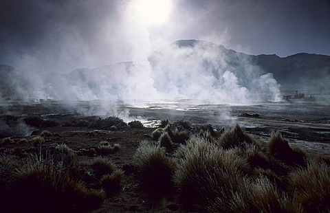 CHL, Chile, Atacama Desert: the hot springs and geysers of El Tatio.
