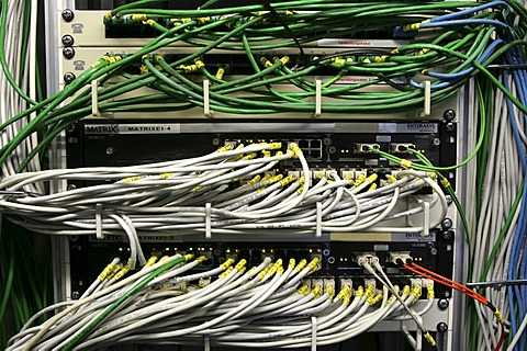 DEU, Germany : Cable of a computer server center of a company.