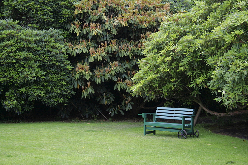 Park bench, Lost Gardens of Heligan, Cornwall, Great Britain