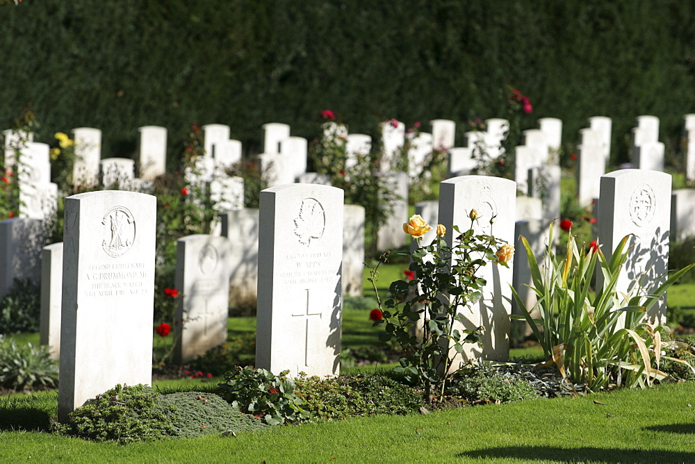 Gravestones, military cemetery, Cologne, North Rhine-Westphalia, Germany