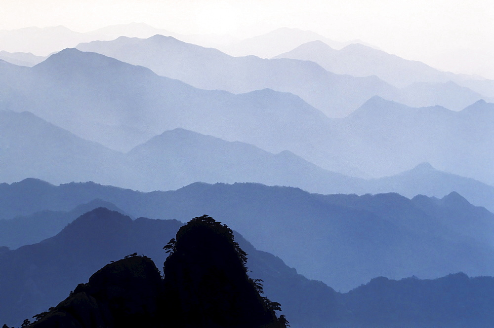 Early morning mist in the Huangshan Mountains, Huangshan, Anhui, China, Asia