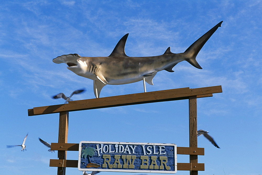 Holiday Isle Resort, decorative hammerhead shark, Key Islamorada, Florida Keys, Florida, USA