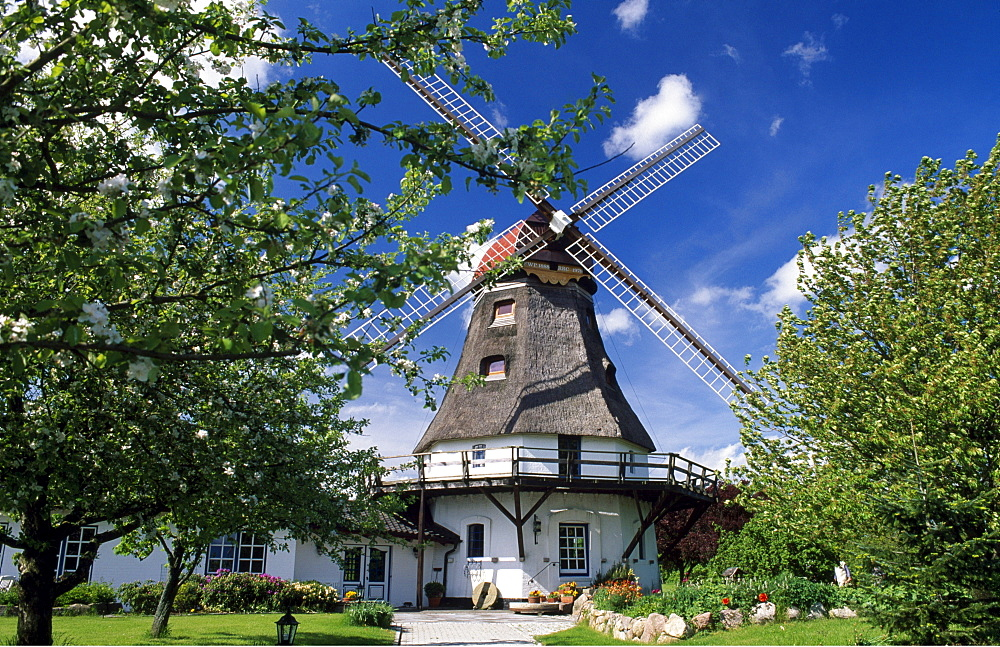 Windmill in Groedersby on the Schlei River, Schleswig-Holstein, Germany