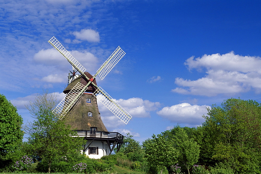 Windmill, Pommerby in the Angeln region on the Schlei River, Schleswig-Holstein, Germany, Europe