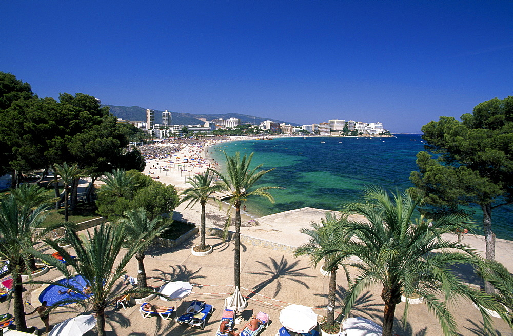 Palm beach in Magaluf, Majorca, Balearic Islands, Spain, Europe
