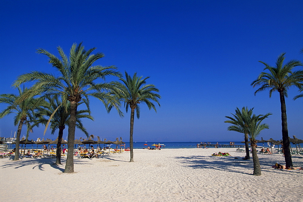 Alcudia Beach, Majorca, Balearic Islands, Spain, Europe