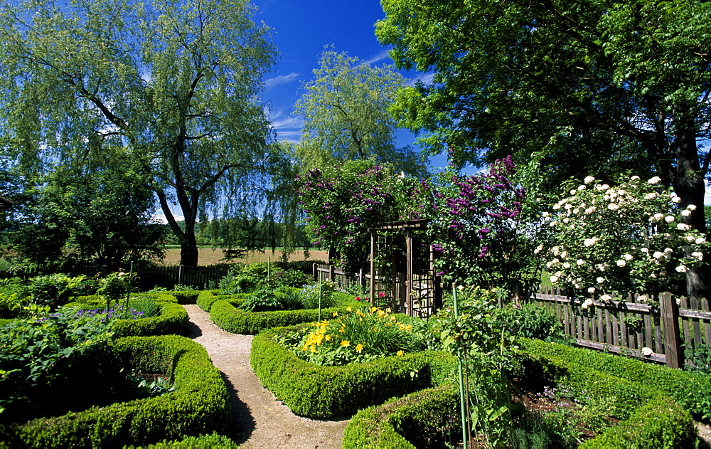 Herb garden, Bad Birnbach, Rottal Valley, Lower Bavaria, Germany, Europe