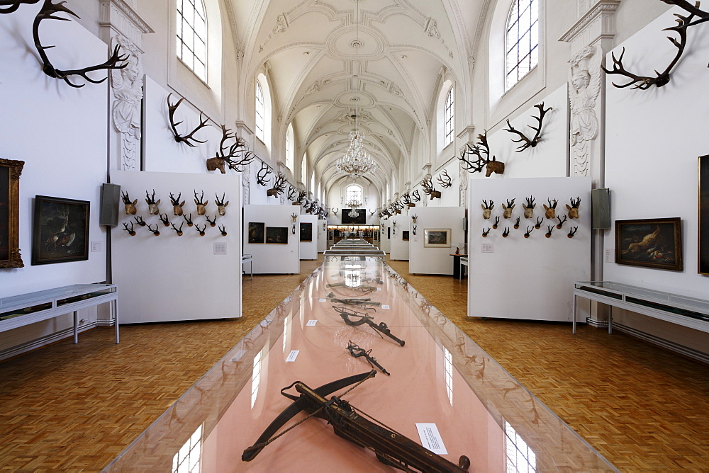 White Hall, Deutsches Jagd- und Fischereimuseum, German Hunting and Fishing Museum in the former Augustinerkirche Church, Munich, Bavaria, Germany
