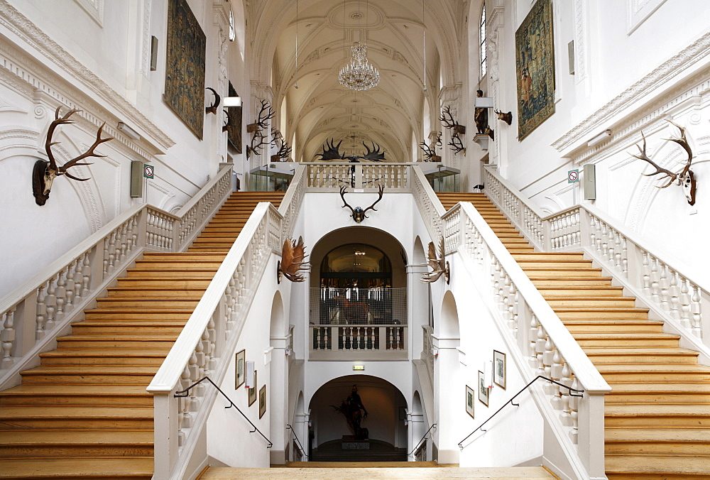 Staircase, White Hall, Deutsches Jagd- und Fischereimuseum, German Hunting and Fishing Museum in the former Augustinerkirche Church, Munich, Bavaria, Germany