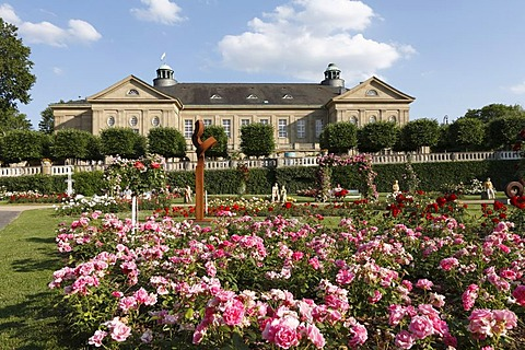 Rose garden in front of the Regentenbau in Bad Kissingen, Rhoen, Lower Franconia, Bavaria, Germany, Europe