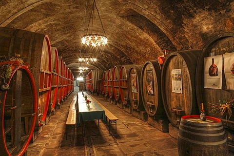 Wine cellar, winemaker's cellar in Red Schloss Palace, Hammelburg, Rhoen Mountains, Lower Franconia, Bavaria, Germany, Europe