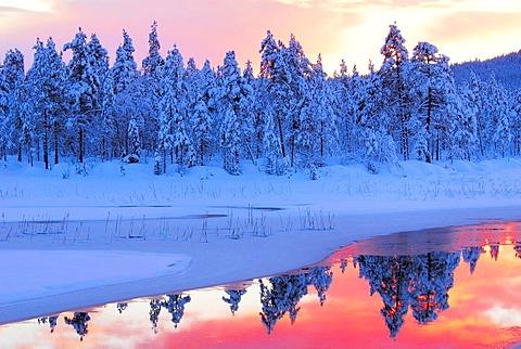 Schwedish Lappland, Saami Region, North Sweden - 832-328708