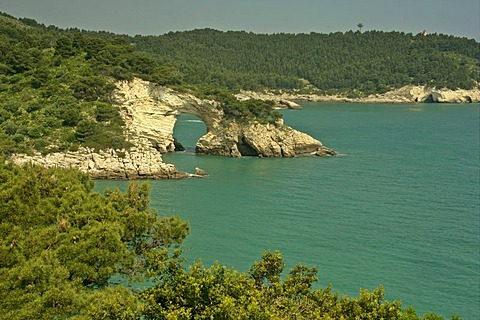 Coast line with rock arch between Mattinata and Vieste, Gargano, Italy