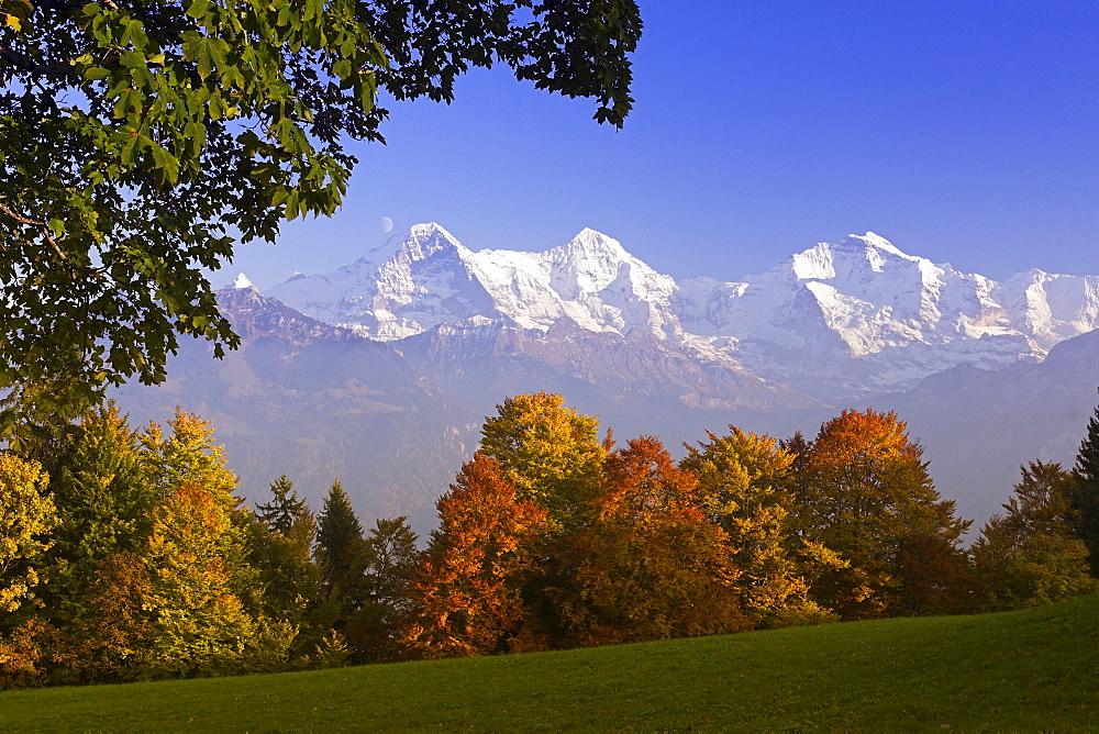 View from Beatenberg on Eiger (l) Moench (M) Jungfrau (r), Berner Oberland, Switzerland