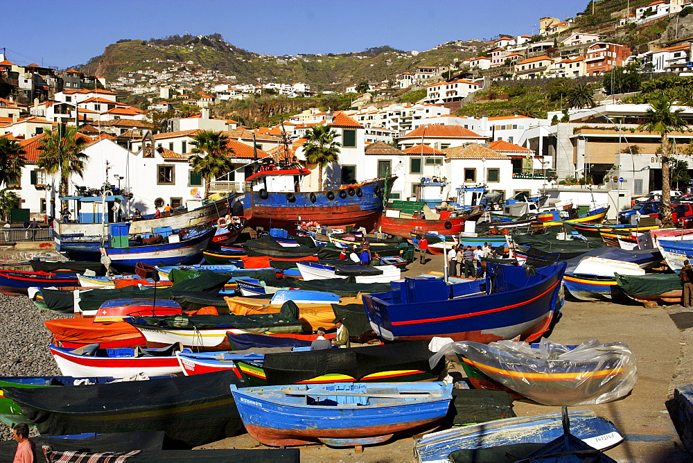 Fishing boats in the harbour of Camara de Lobos, Madeira, Portugal