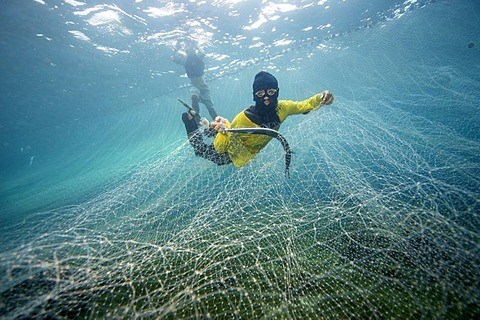 Fishermen catching Pacific needlefish with a net, Philippines