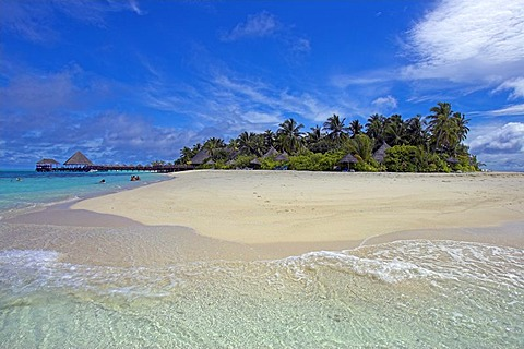 Island with palm trees, Maledives