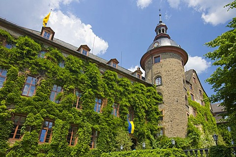Overgrown facade, Laubach Castle, residence of the count zu Solms-Laubach, Laubach, Hesse, Germany, Europe