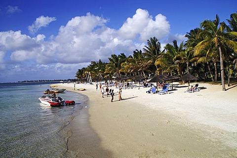 Beach with palms and tourists, Trou aux Biches, Mauritius, Africa