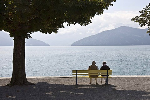 Pensioner at the lake, Lucerne, Switzerland