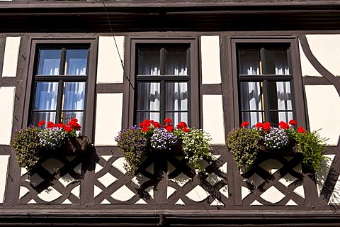 Old part of town, well-maintained timbered houses with flower boxes, Miltenberg, Bavaria, Germany