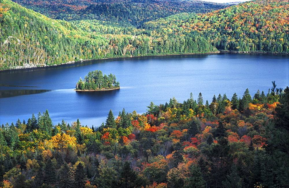 Small tree-covered island in Lake Wapizagonke surrounded by trees just changing into their autumn colours, Indian summer, Parc National de la Mauricie, Quebec, Canada