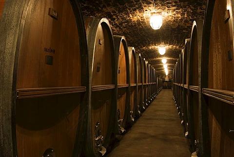 Wurzburg wine cellar Burgerspital Franconia Bavaria Germany
