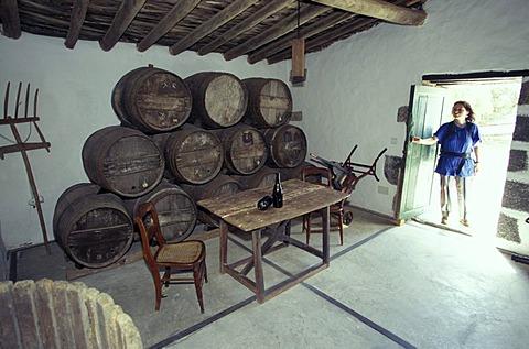 Vine museum El Grifo Lanzarote Canary Islands