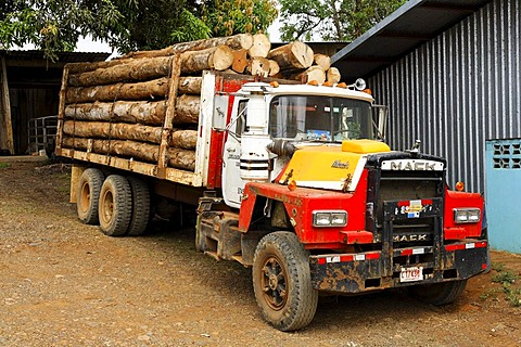 Logging, truck, Costa Rica