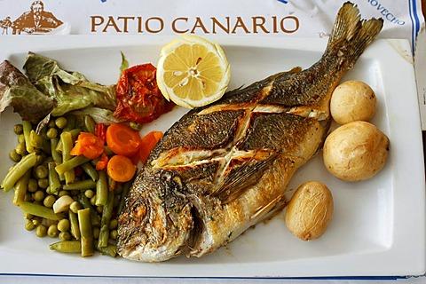 Seabream, Dorada, Restaurant Patio Canario, Puerto de Mogan, Gran Canaria, Spain - 832-336453