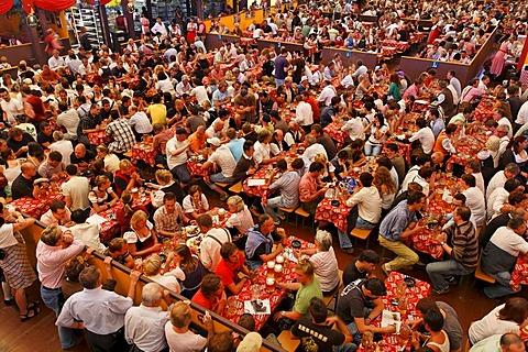 Oktoberfest, Munich beer festival, Hippodrom tent, Bavaria, Germany - 832-336596